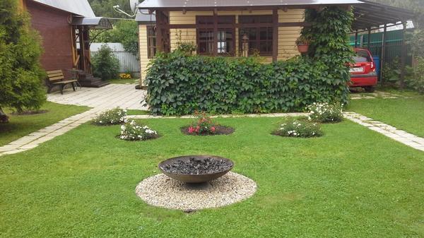 Вот такой газон получается после кошения этой прекрасной газонокосилкой!