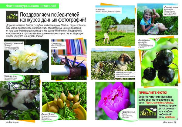 номер 10 2017 года Журнал Дом в саду, победители фотоконкурса