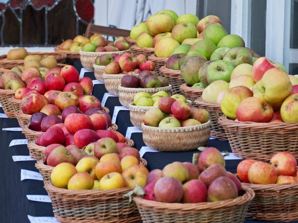 На 7 дач - Яблочный Спас!