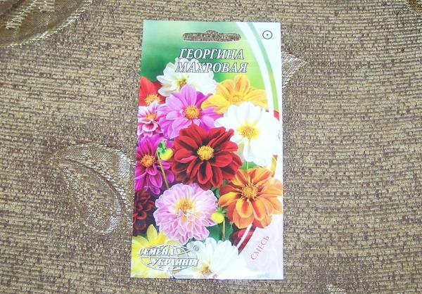 Пакетик семян Георгина махровая