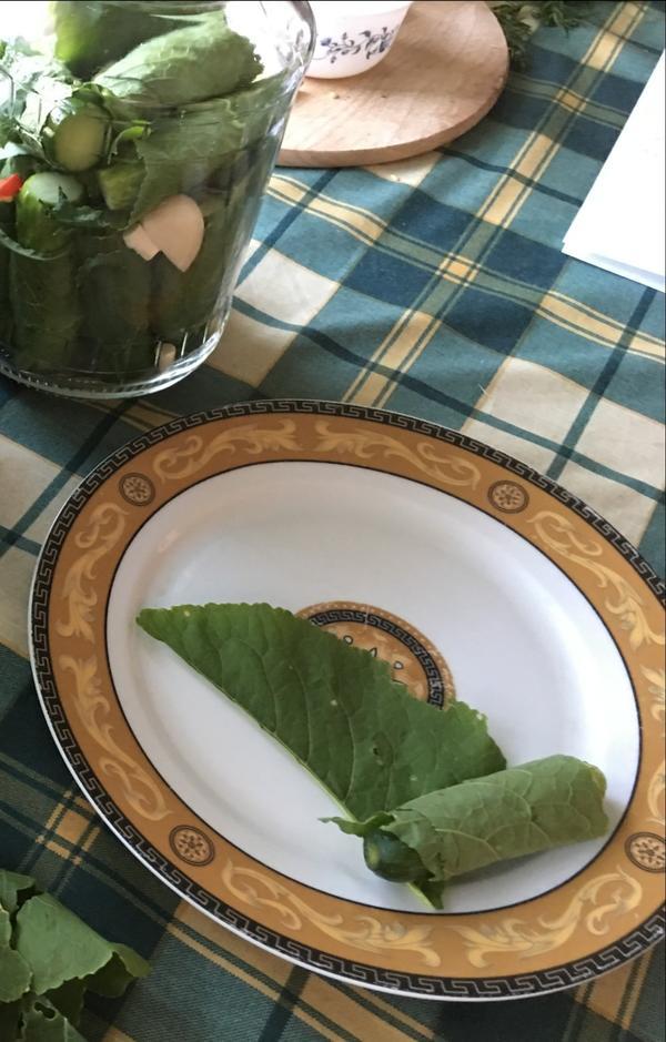 Ставим огурчики, завёрнутые в листья хрена, вертикально.  Затем сверху парочку колец острого перца, по листику смородины и малины. Можно и другие любимые специи.   Второй слой огурчиков складываем горизонтально до верха.  Заливаем баночки кипятком на 15 минут.   Готовим рассол: На 1,5 литра воды кладем 2 ст.ложки соли с горкой.   Заливаем горячим рассолом. Закрываем пластиковыми присасывающими крышками и храним в прохладном месте.