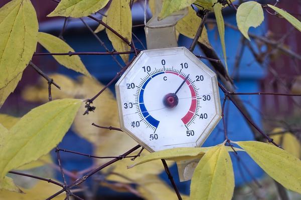 Гидрометцентр 7 дач спрашивает - как у вас с погодой на сегодня? Прием!