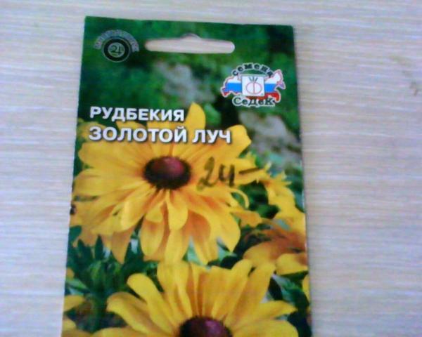 В 2016 году приобрела семена многолетней рудбекии сорта 'Золотой луч' от агрофирмы Седек.