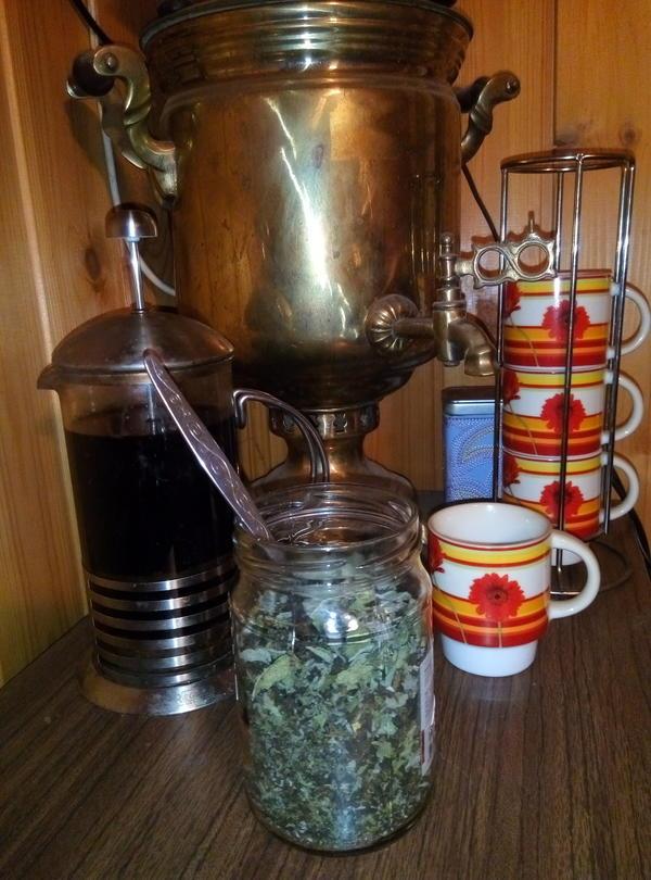 Наша семья давно отказалась от традиционного чая, с тех пор, как научились собирать и заготавливать самостоятельно Иван чай (кипрей). Также очень нравится дополнять его разными полезными добавками — мятой, мелиссой, шалфеем, листьями смородины, малины, веточками розмарина, чабрецом и душицей.