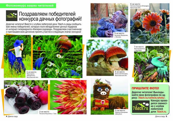 Фотографии победителей осеннего этапа фотоконкурса - в журнале Дом в саду!