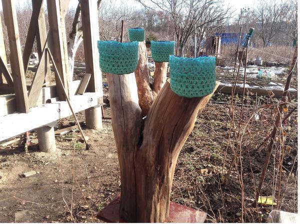Сам пень для сохранности покрою антисептиком для дерева. Пока не определилась, каким. Если у кого-то есть такой опыт — подскажите.