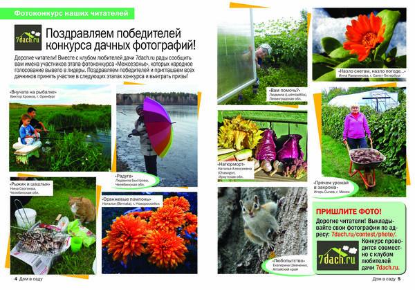 Фотографии победителей народного голосования в Межсезонье - в журнале Дом в саду!