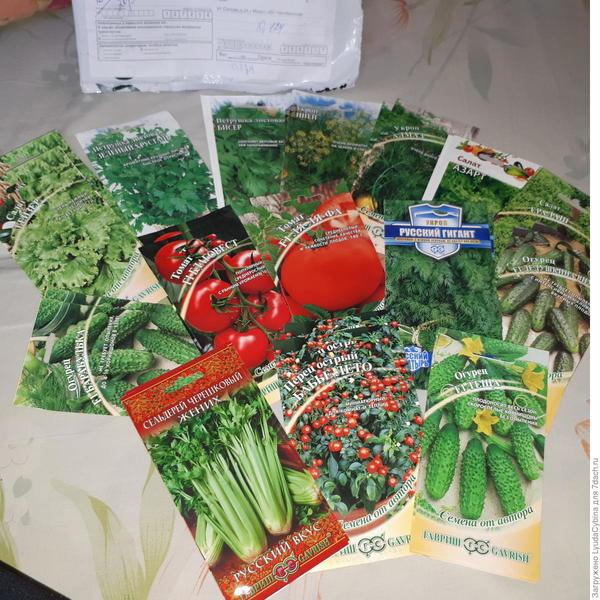 Начало тестирования семян от Гавриш. Я получила посылку!