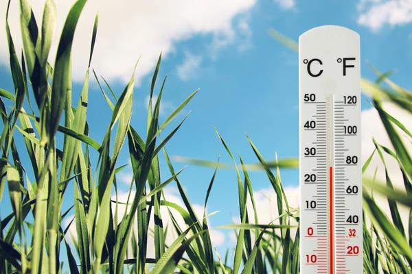 Гидрометцентр 7 дач спрашивает вас о погоде...