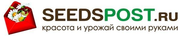 Спонсор конкурса - Seedspost.ru