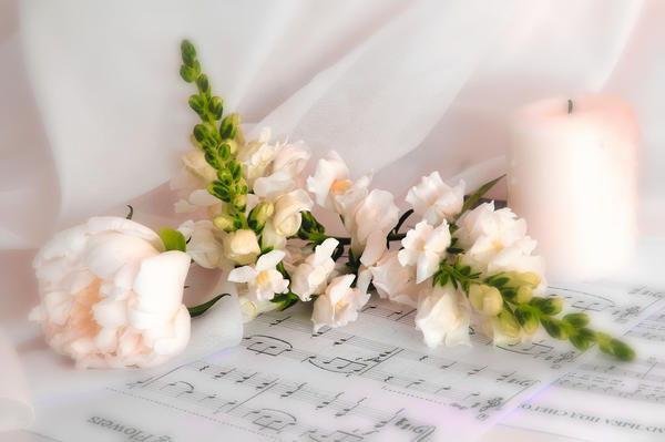Je vois la vie en rose (Я вижу жизнь в розовом цвете) Автор - Маргарита (Margarita1)