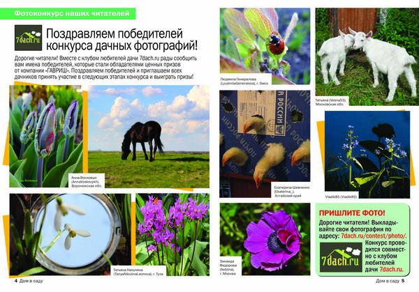 Фото победителей конкурса фотографий Весенний перезвон