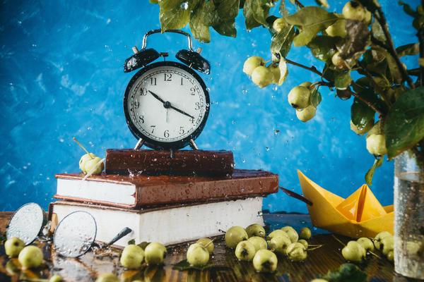Правила конкурса дачных фотографий Мой любимый плодовый сад