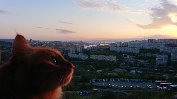 Фото Яны (Yana_Vl)