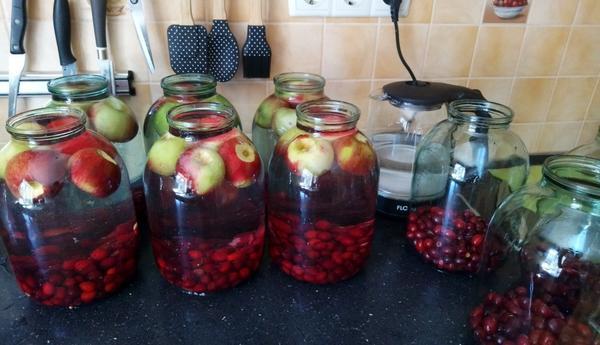 Кто подскажет проверенный рецепт заготовок с яблоками?