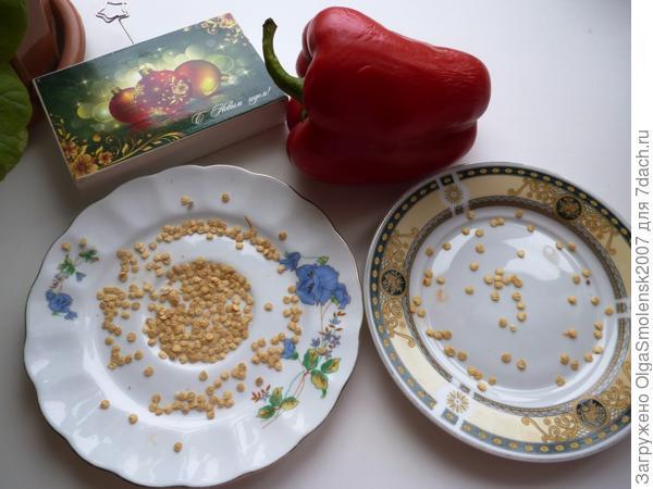 Семена из магазинного перца