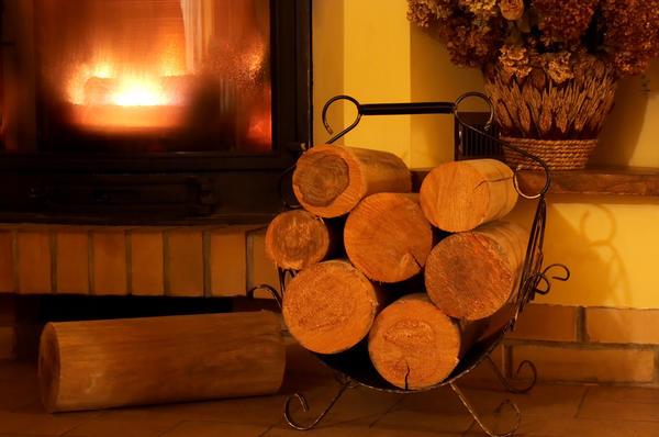 Хорошо, если у вас в доме всегда хранится дежурный запас дров