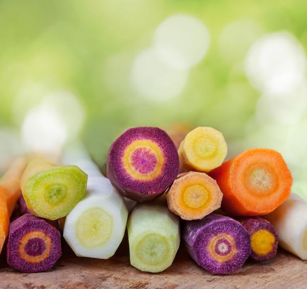 Разноцветные срезы морковки