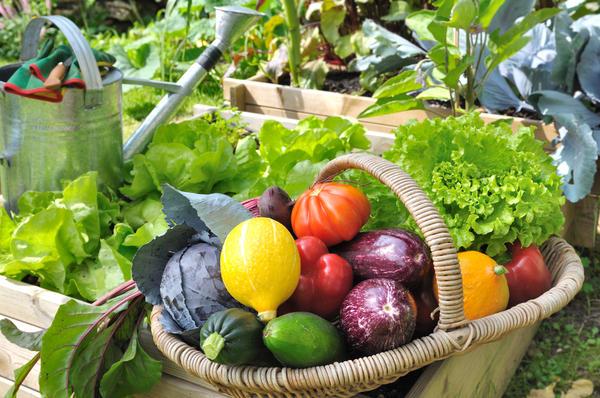 Урожайность культуры - величина очень зависимая
