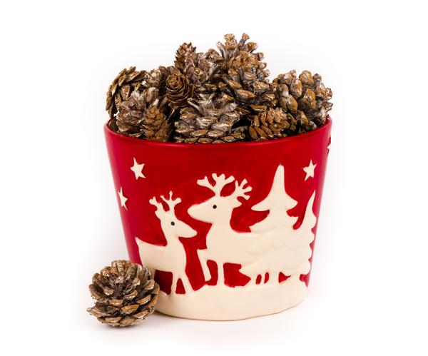 Шишки в рождественском ведерке