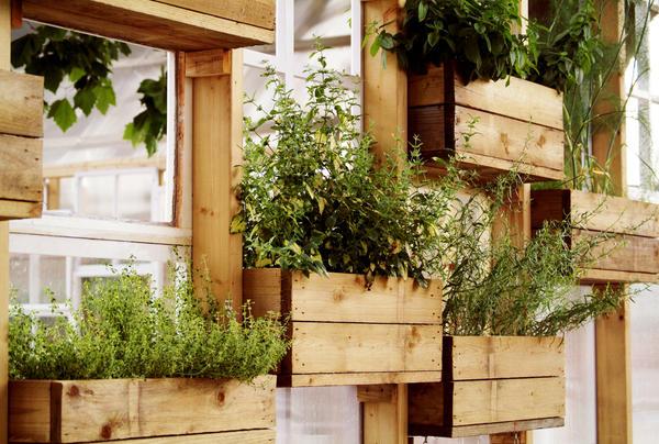 Можно и контейнеры-грядки с овощами расположить вертикально