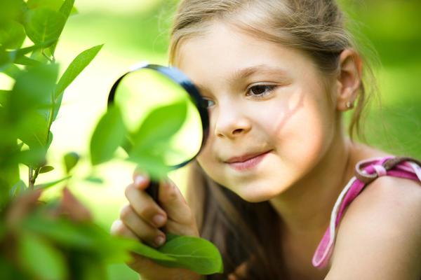 Начиная очередной дачный сезон, самое время вспомнить о различных препаратах для растений