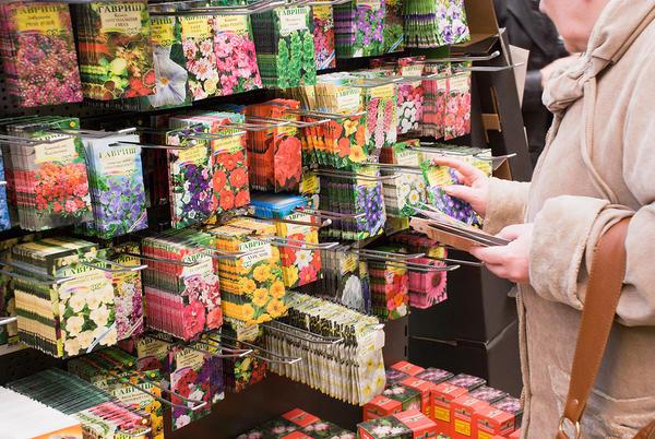 Женщина в магазине выбирает семена цветов