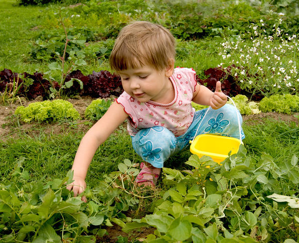 Девочка в огороде