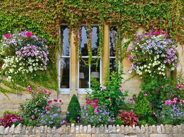 В мечтах мы видим волшебное и быстрое превращение запущенной дачи в дивный сад