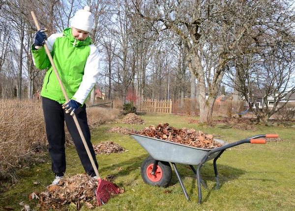 Многие люди, неравнодушные к природе, мечтающие сохранить ее красоту, отмечают этот праздник посадкой деревьев, уборкой