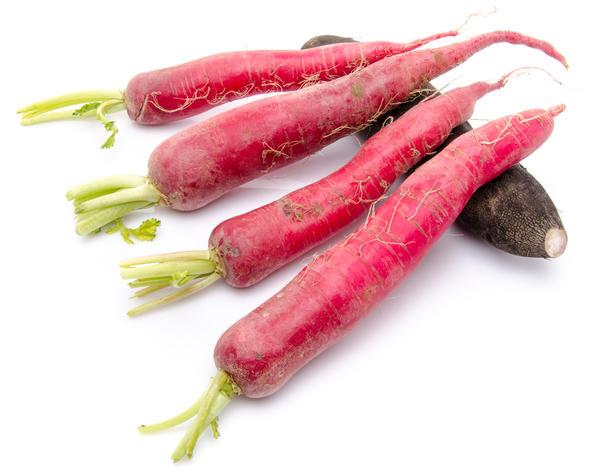 Сорта с розовыми корнеплодами, как правило, летние