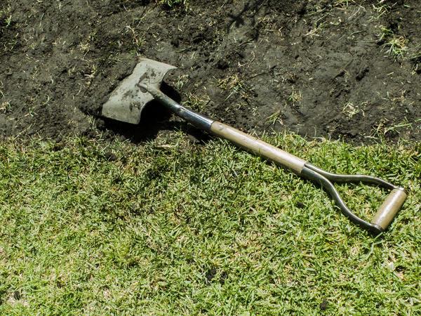 Способы восстановления плодородия почвы каждый выбирает на свой вкус