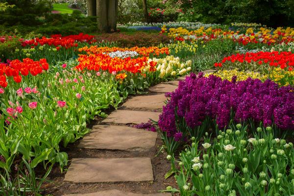 Давайте поговорим о том, что нужно предпринять, чтобы садовые дорожки прослужили как можно дольше