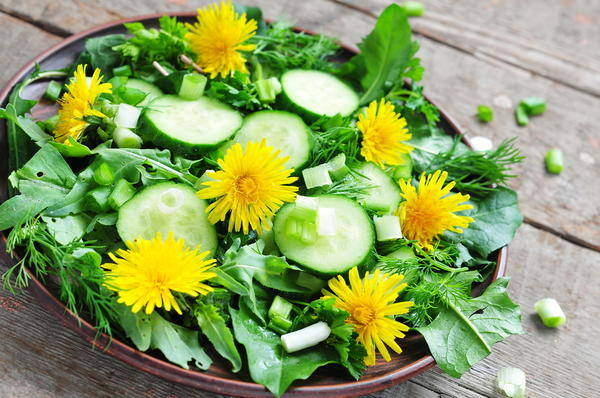 Сок из листьев одуванчика отличается исключительно высокой концентрацией кальция, магния и натрия