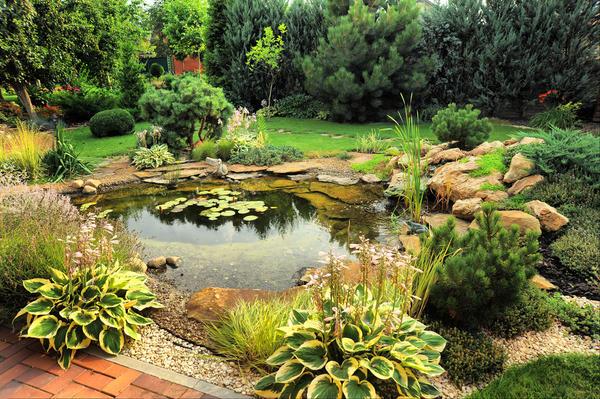 Садовый водоем, в котором через некоторое время поселятся рыбки, должен располагаться недалеко от дома