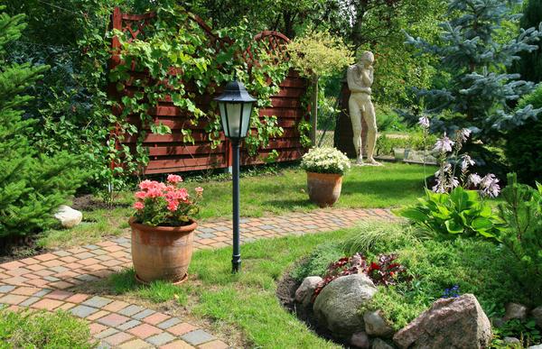 Еще один обязательный атрибут польского садика - газон