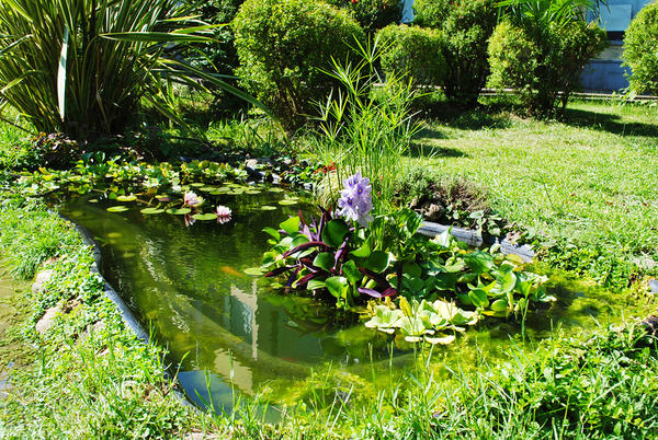 В русском саду обязательно должна быть водная составляющая