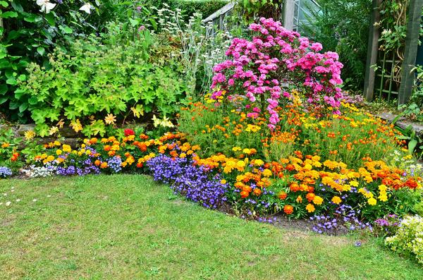 Цветник свободных очертаний, на котором мирно уживаются растения разной высоты, периода цветения и вида