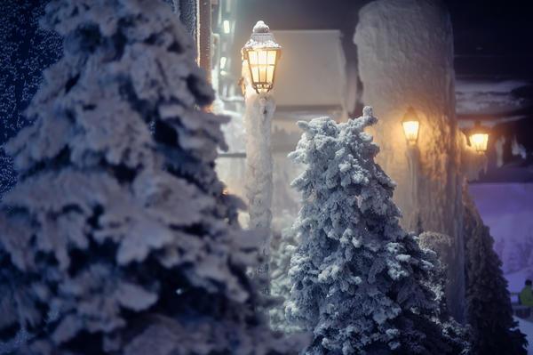Подойдут высокие фонари, расположенные по бокам основных дорожек или между воротами и домом