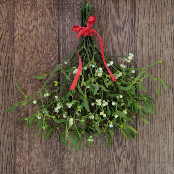 В декоре дома омелу можно использовать в составе венка или отдельной веточкой, перевязанной симпатичным бантиком