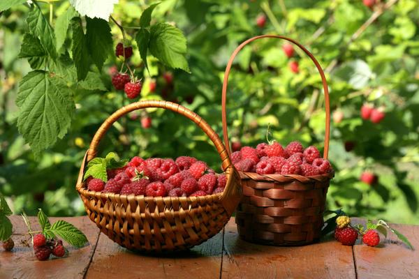 Для ягод стоит выбрать маленькие корзинки