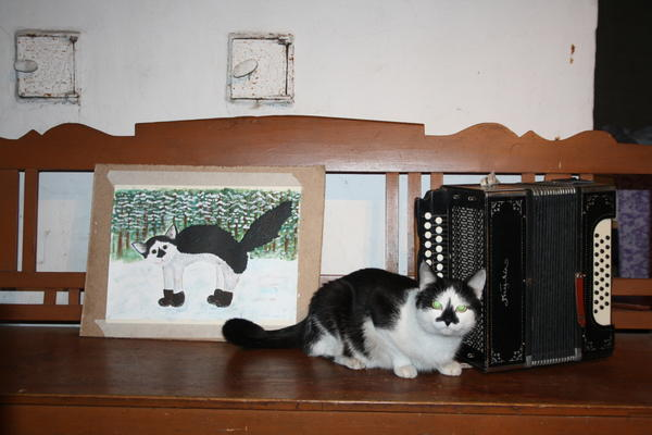 кот Василий около печки на диване