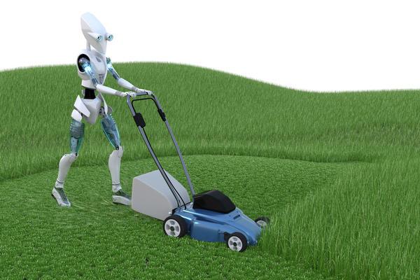 Какие бывают дачные роботы