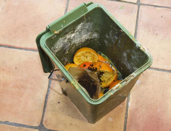 Лимонная дезинфекция мусорного ведра