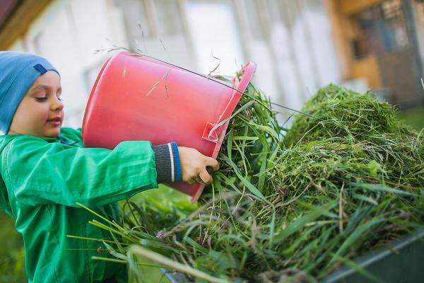 Для садовых работ ведро - незаменимый помощник