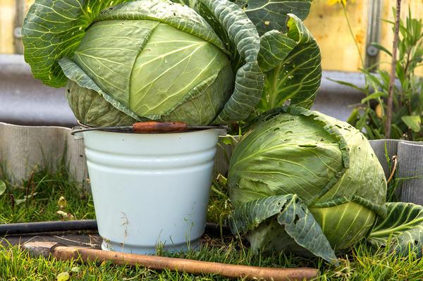 Использовать ведро с поврежденной эмалью для пищевых продуктов уже нельзя