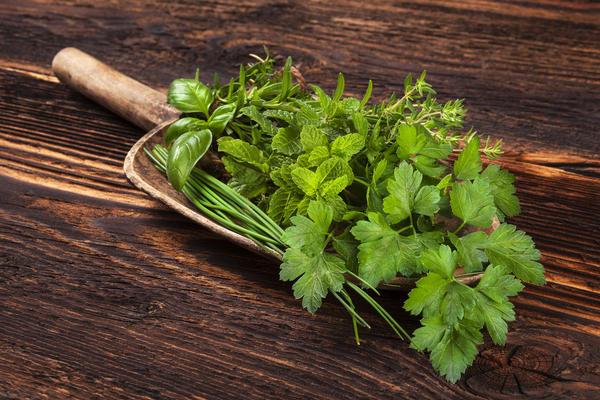Сушить травы, имеющие сильный запах, при большой температуре нельзя: у них улетучивается весь аромат