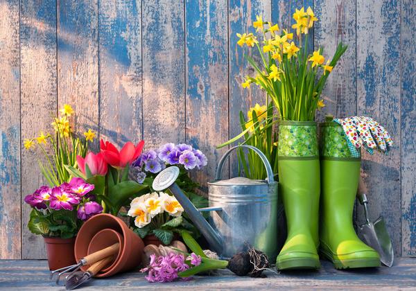 Весна даже в северных краях уже заявляет о себе