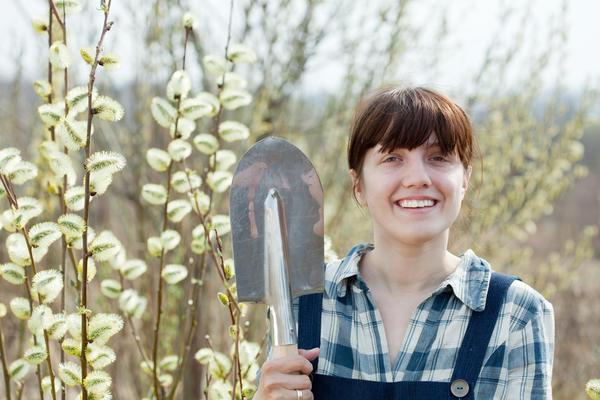 Женщина с лопатой у ивы