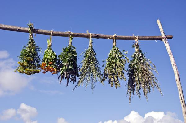Пучки сушёных трав